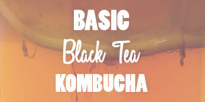 Basic Black Tea Kombucha Recipe Blog Photo